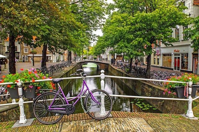 Tudo sobre a pesquisa na Holanda