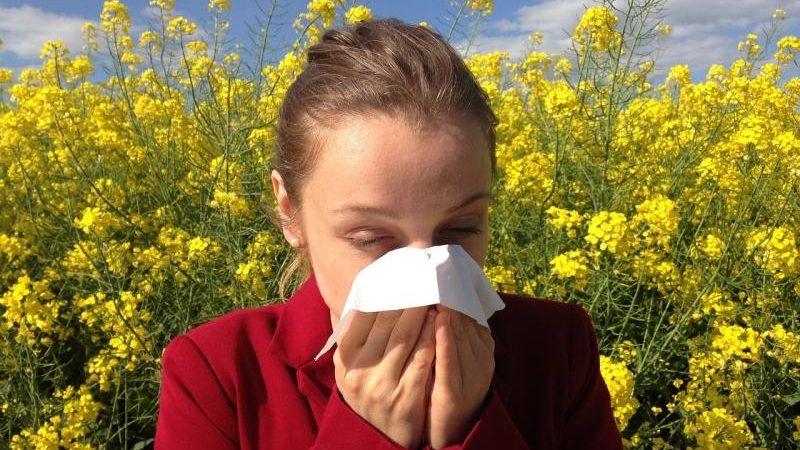 Como posso tratar alergia sazonal na Irlanda